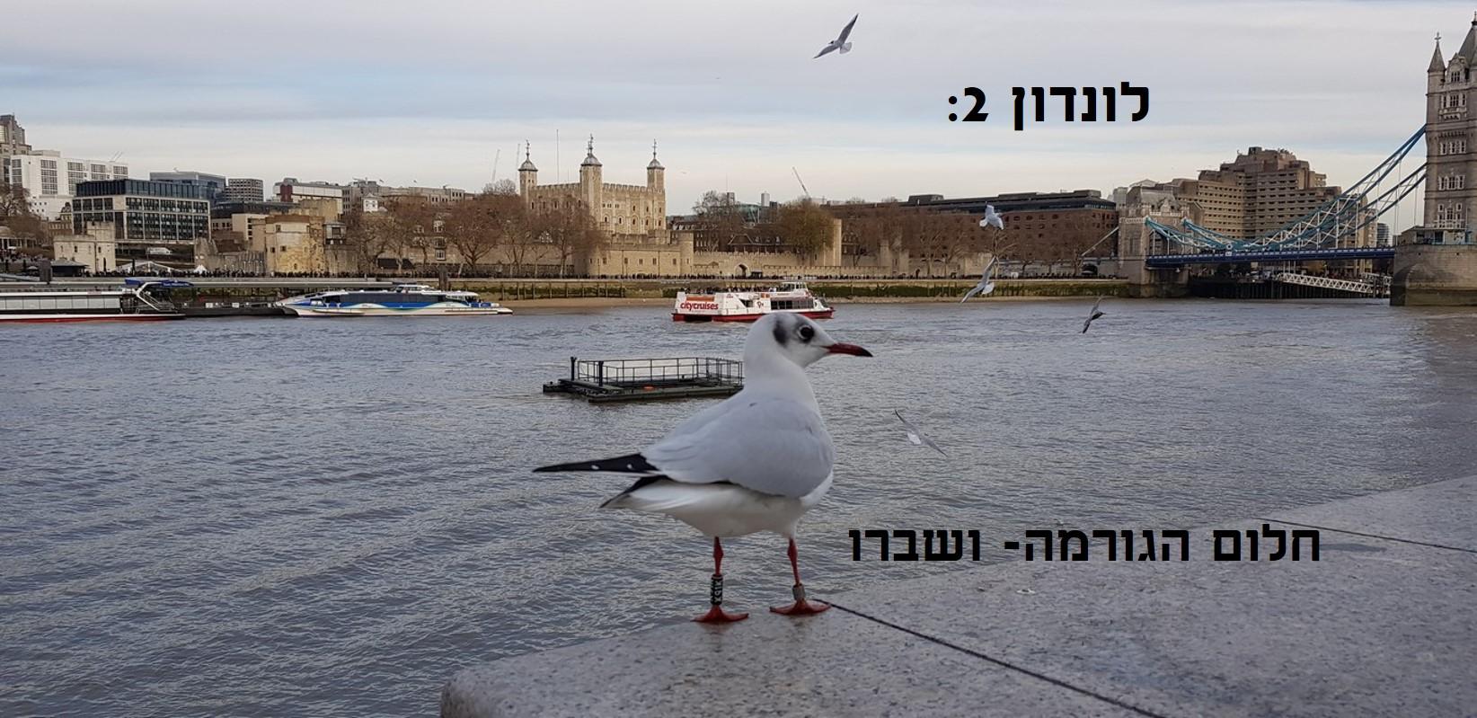 לונדון 2: חלום הגורמה ושיברו ועוד כמה אסונות קטנים