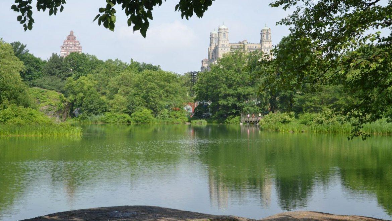 יומני ניו יורק 3: סנטרל פארק והמט