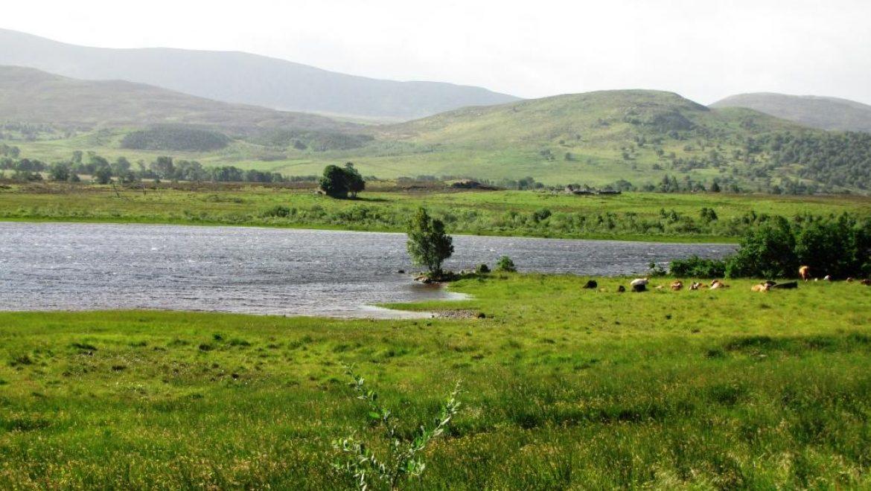 סקוטלנד: פרק 4