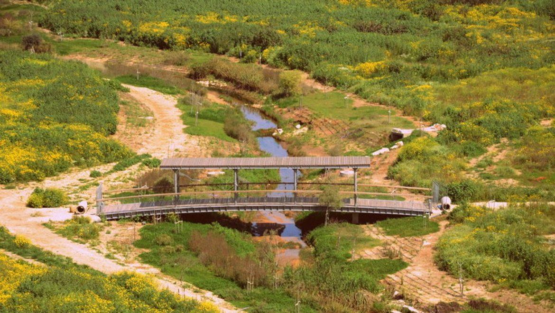 הגשרים של מחוז הוד השרון