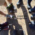 שביל ישראל: מסלול מס' 6